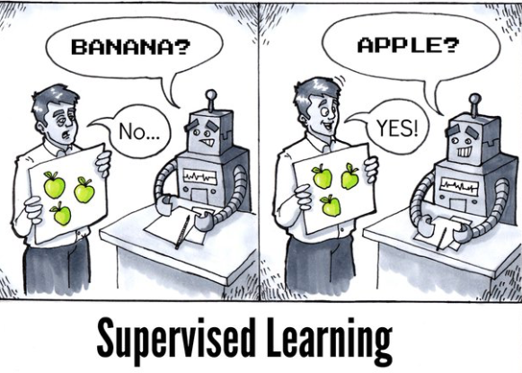 A imagem mostra um robo aprendendo o que são frutas e sendo supervisionado por um humano.