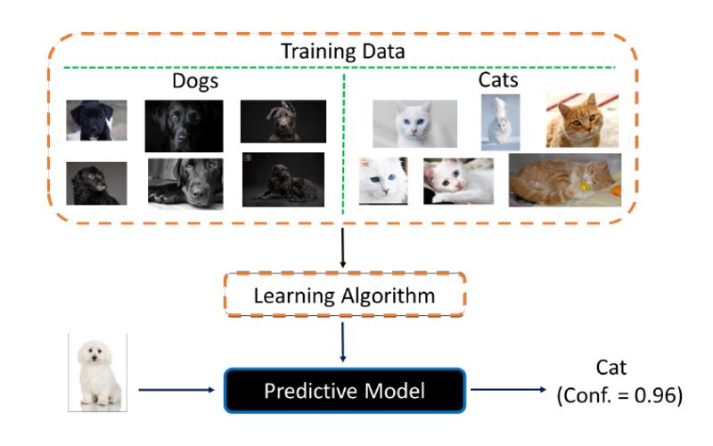 <em>Neste exemplo simplificado, a escolha de dados de entrada incluem apenas imagens de cachorros pretos e de gatos claros, e o resultado é o reconhecimento de um cachorro branco como gato, com confiança de 96%.